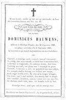 Dominicus Bauwens