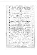 david-césar(1892)20100304084303_00022.jpg