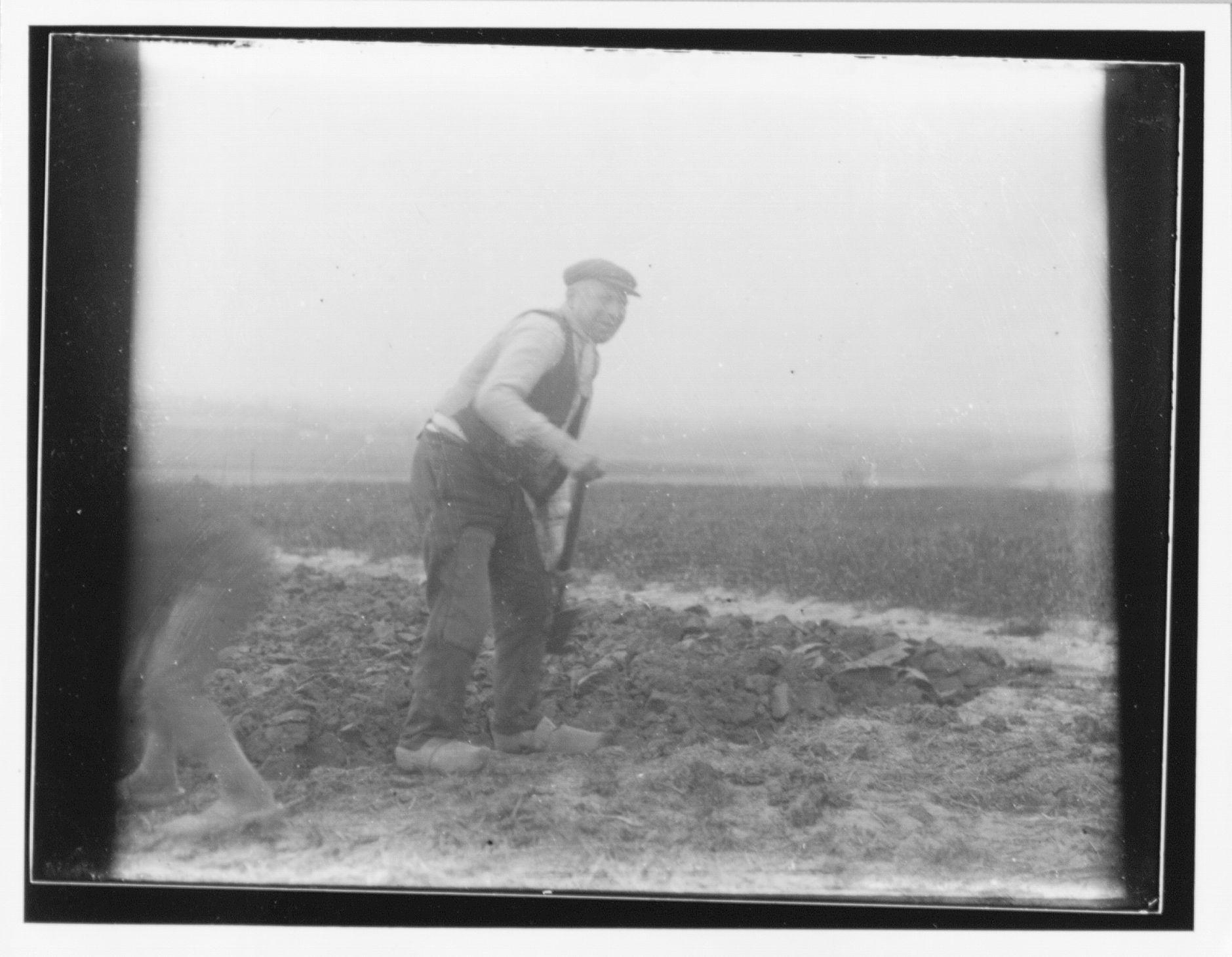 Westflandrica - spittende boer