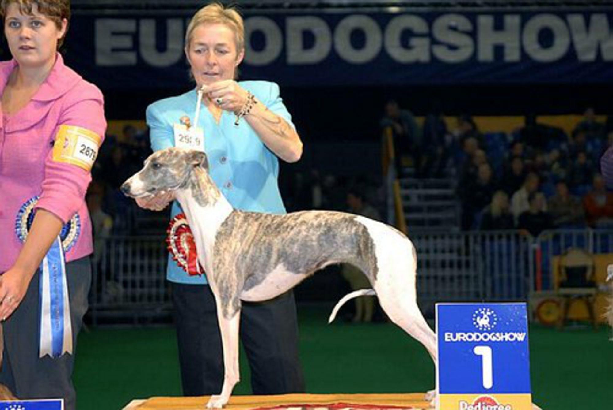 Eurodogshow