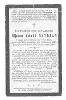 Adolf Nevejan