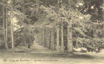 Westflandrica - het kamp van Beverlo