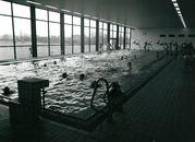Zwembad Mimosa