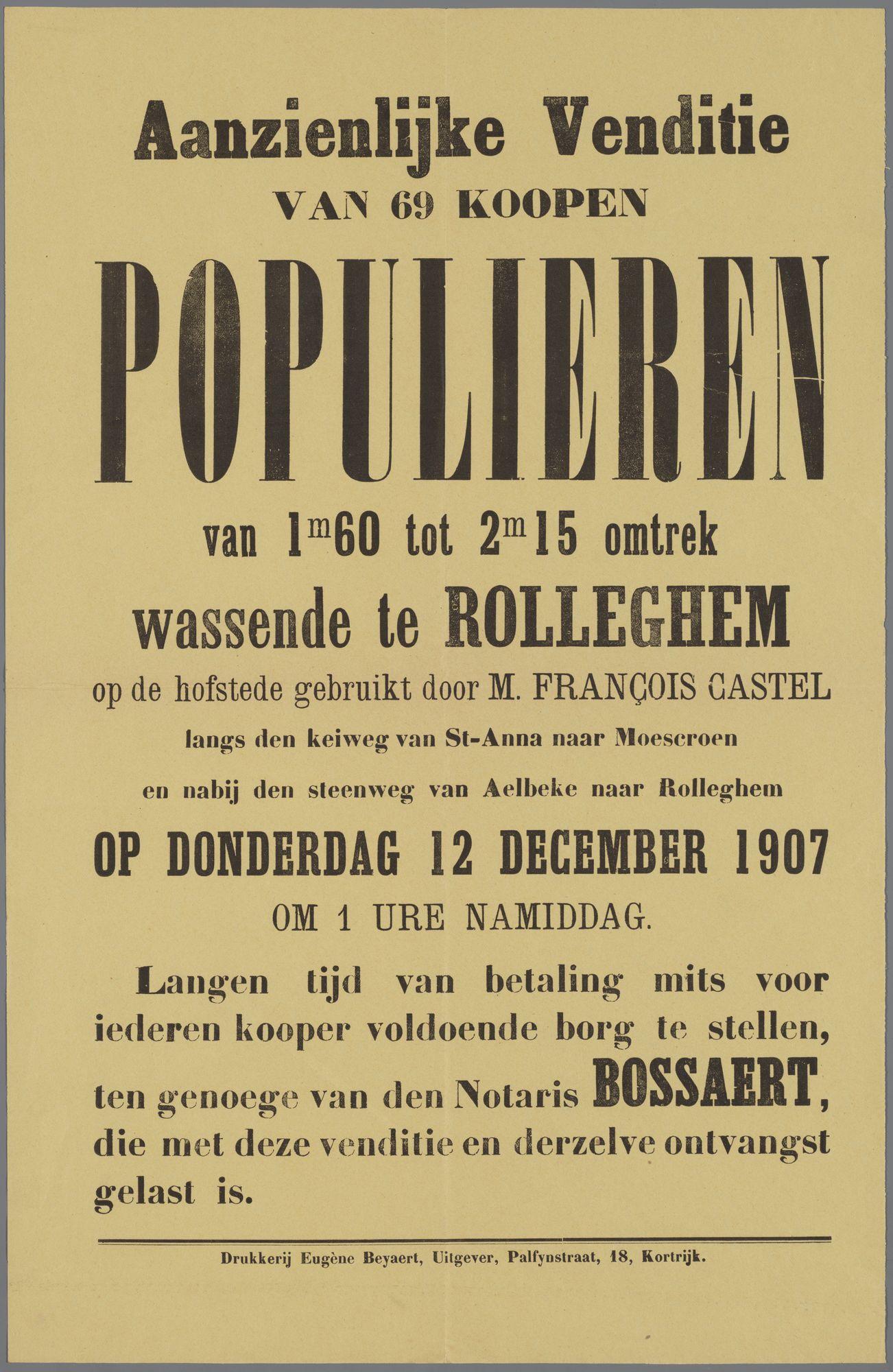 Verkoop van populieren 1907