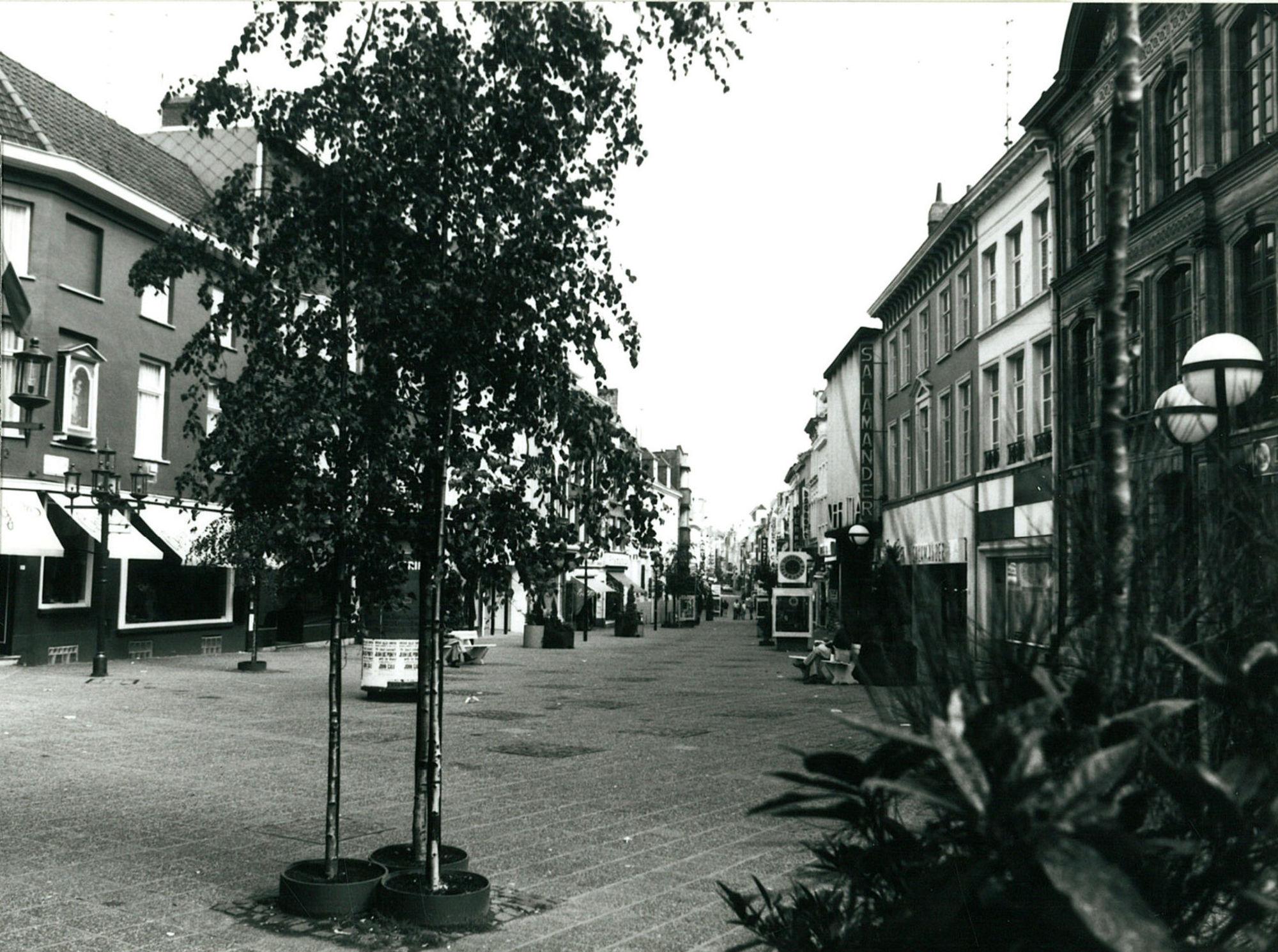 De Lange Steenstraat