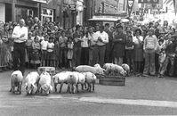 Sinksenfeesten 1976