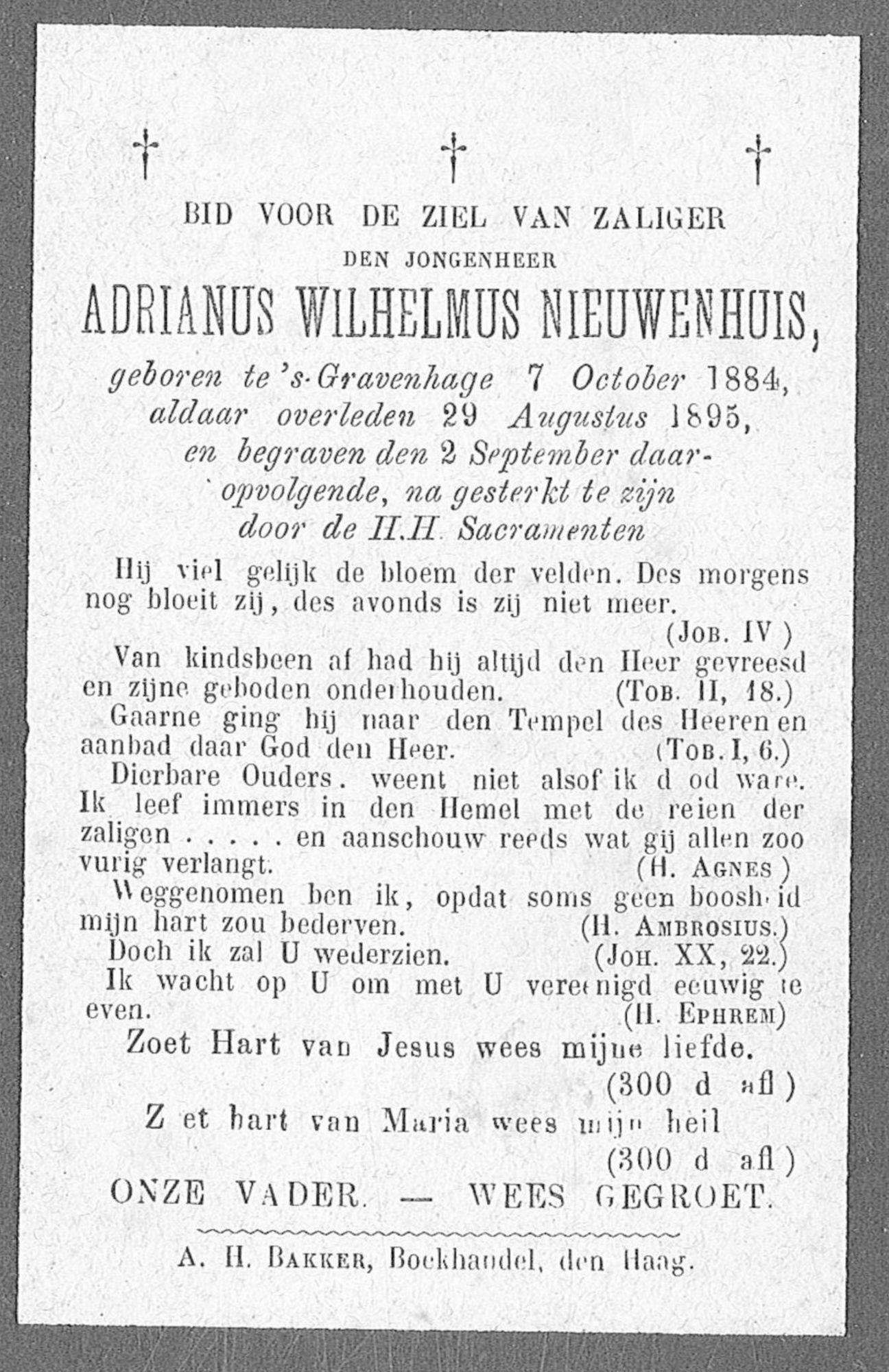 Adrianus-Wilhelmus Nieuwenhuis