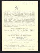 Ludovic-Joseph-Marie-René de Potesta de Waleffe