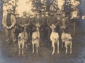 Het Geitenkweek-Syndicaat van Kortrijk 1903