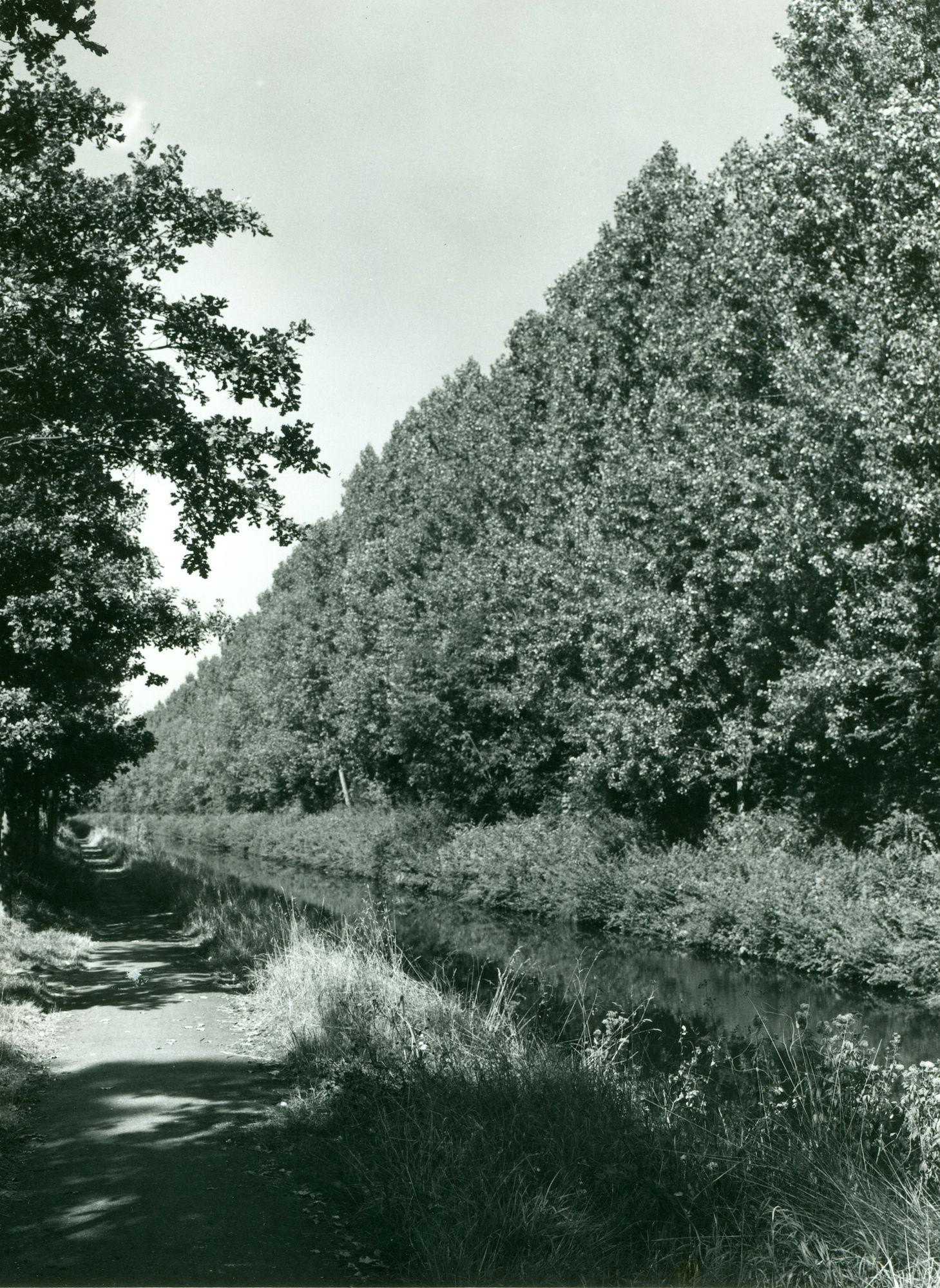 Jaagpad aan tunnel op Kanaal Bossuit-Kortrijk in Moen 1970