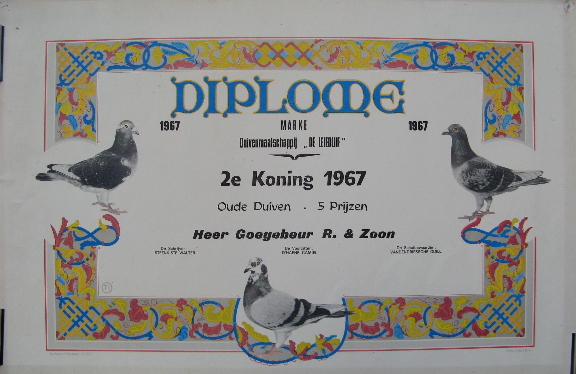 Diploma duivensport