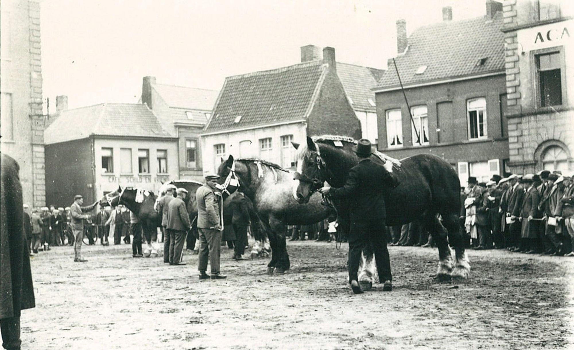 Paardenmarkt op de Houtmarkt in 1935