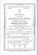 Joannes Bauwens