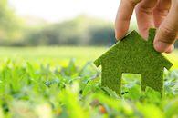 Groen huisje