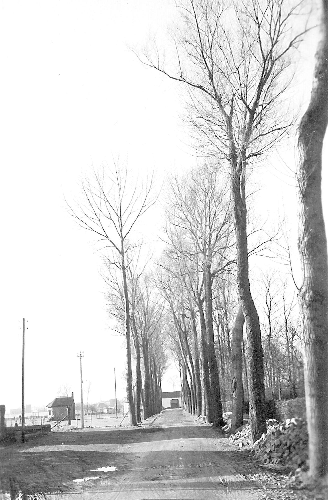 Van Belleghemdreef Marke 1950