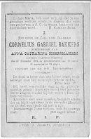 Cornelius Gabriel Bakkers