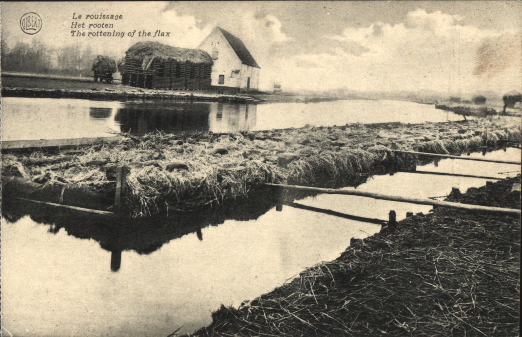 Vlottende rootbakken in de Leie te Kortrijk.