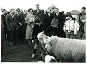 Koningin Fabiola brengt een bezoek aan de kinderboerderij