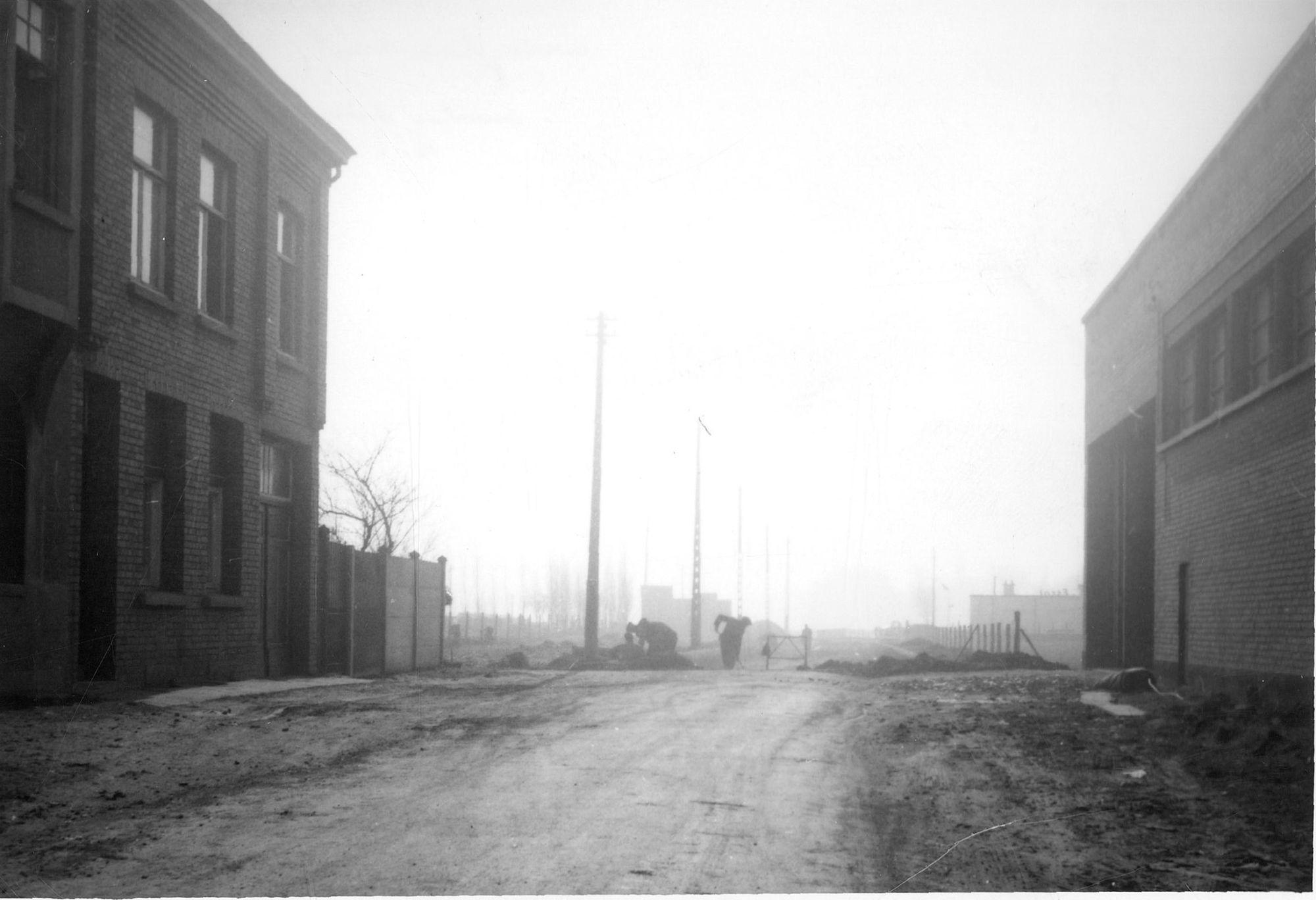 Zwingelaarsstraat 1959