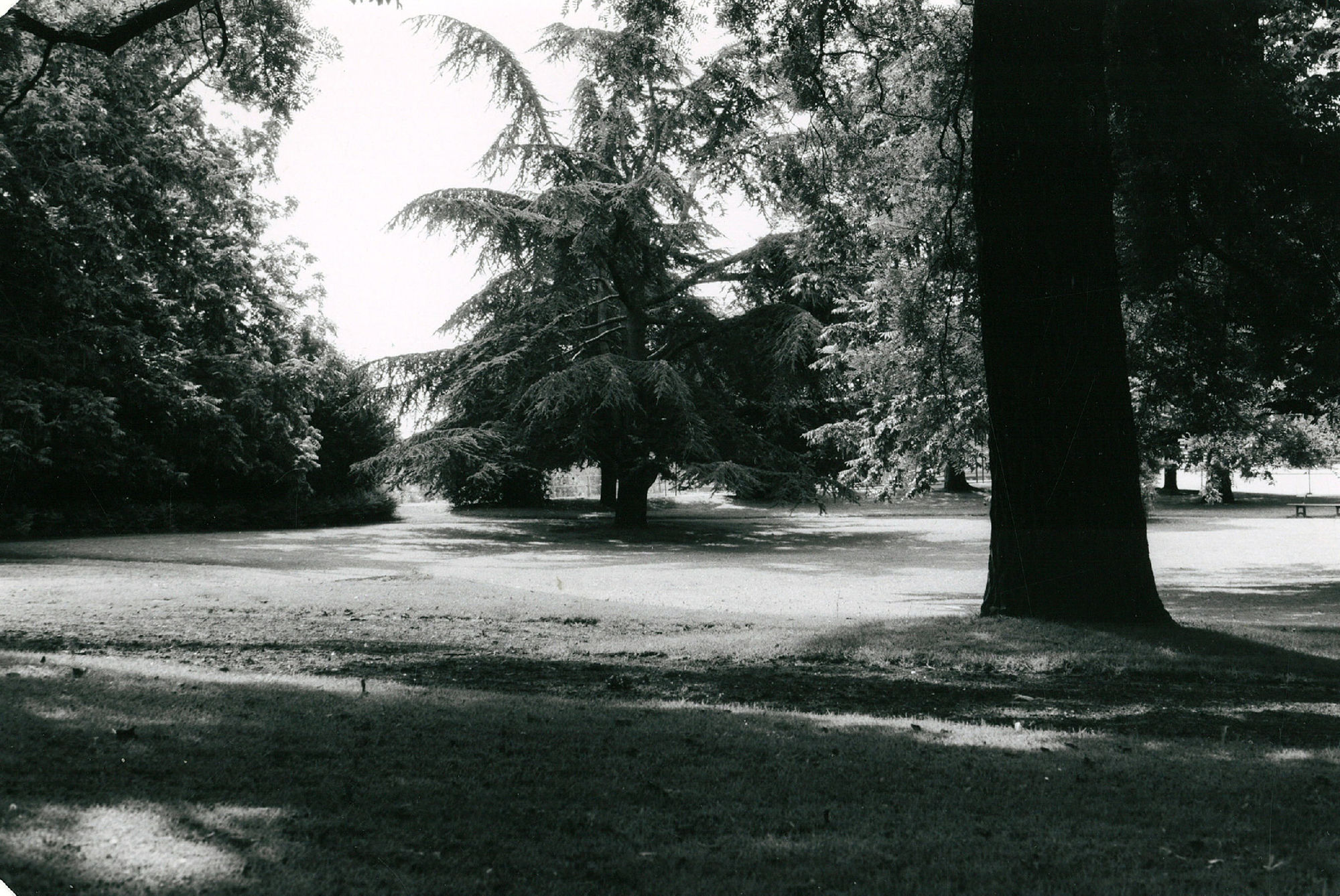 Koning Albertpark