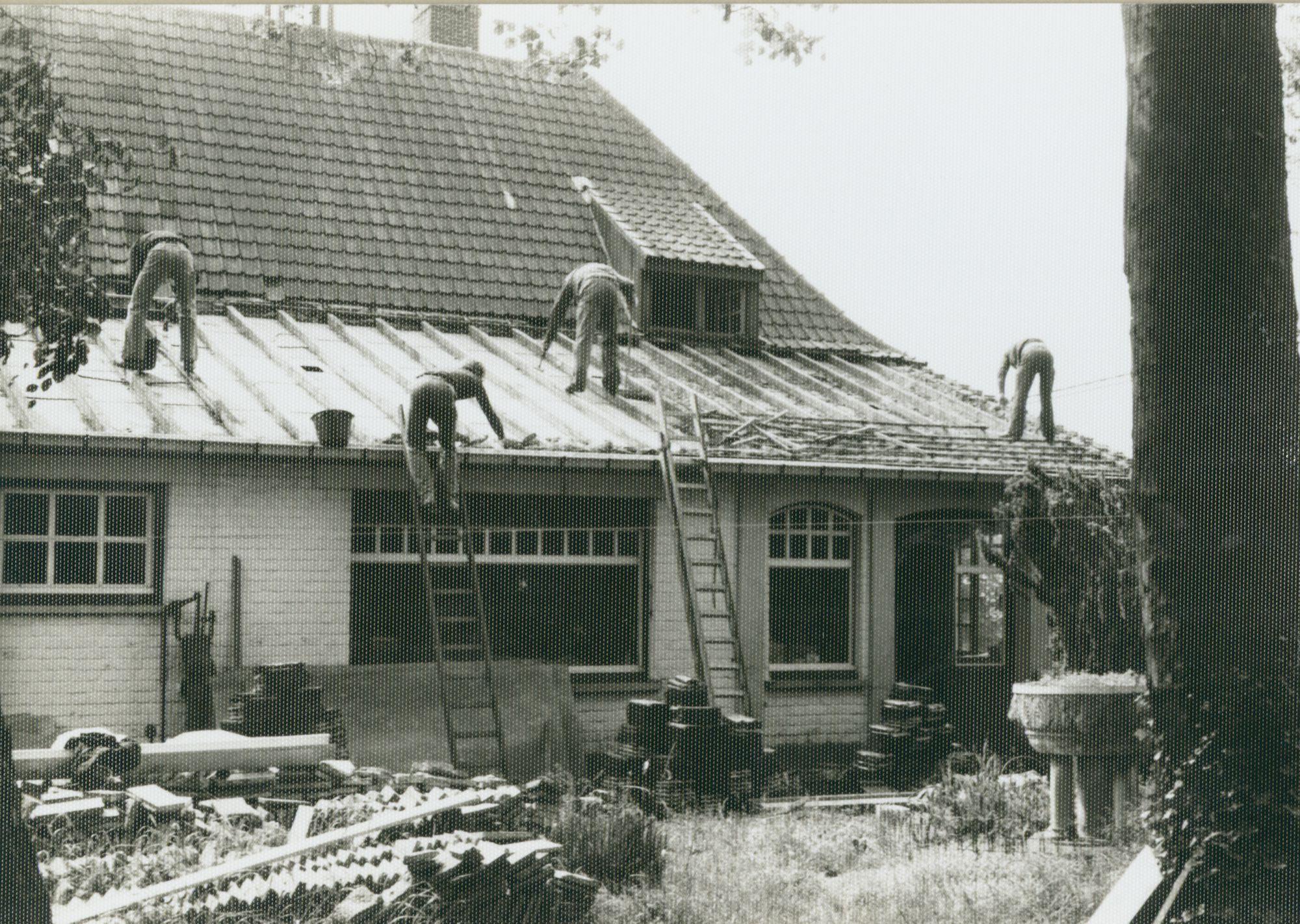 Westflandrica - de restauratie van het Lijsternest