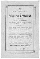 Polydorus Bauwens