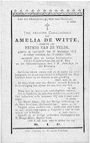 Amelia De Witte