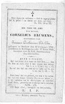 Cornelius Bauwens