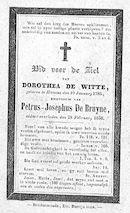Dorothea De Witte