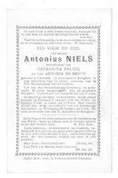 Antonius Niels