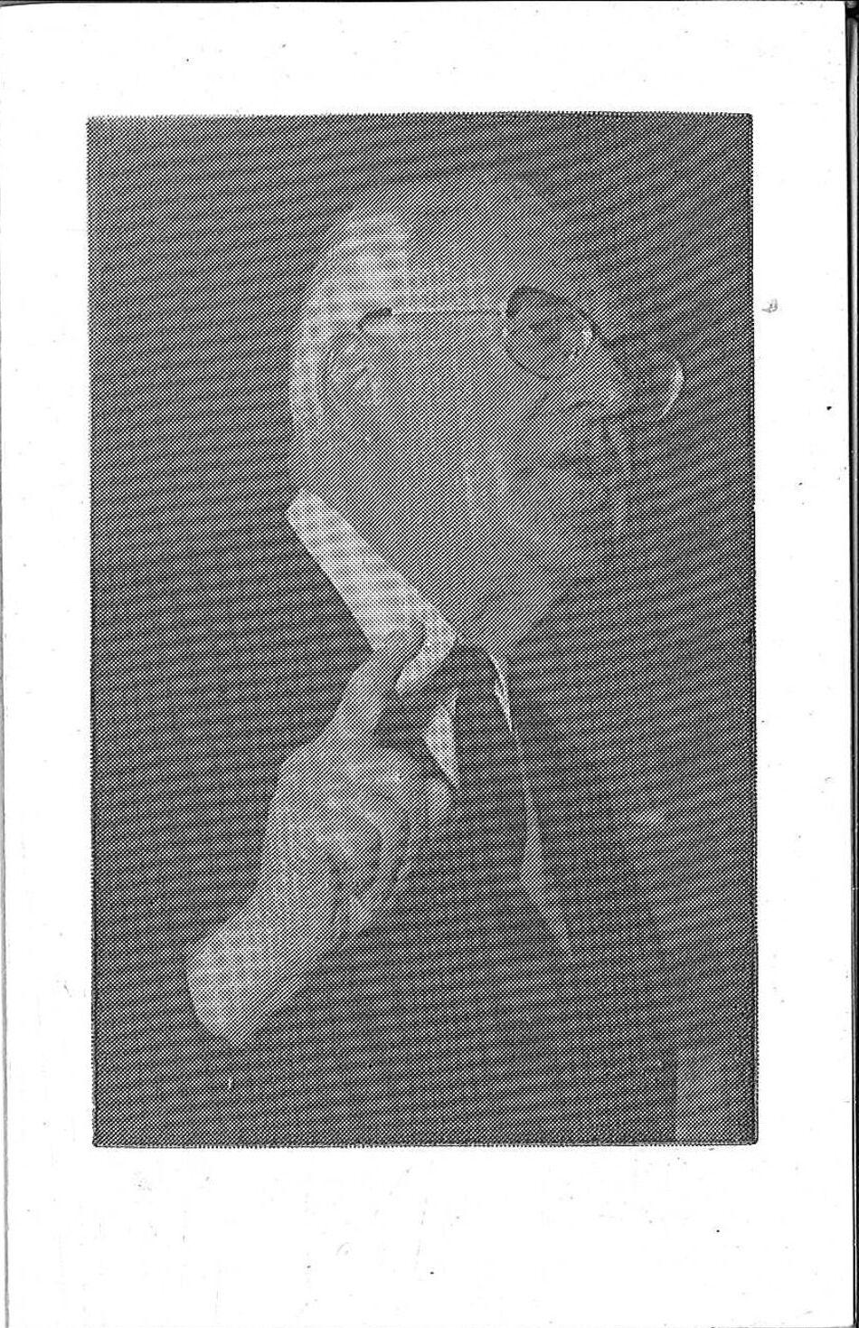Coornaert Georges