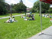 Reuze-picknick