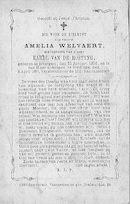 Amelia Welvaert
