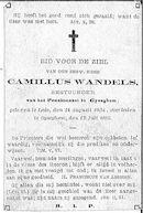 Camillus Wandels