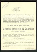 Marie Philomène Joseph Lucie Charlotte Henriette Ghislaine de Moreau d'Ermeton