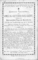 Amelia-Victoria Welvaert