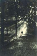 Leeuw van Vlaanderenlaan 1948