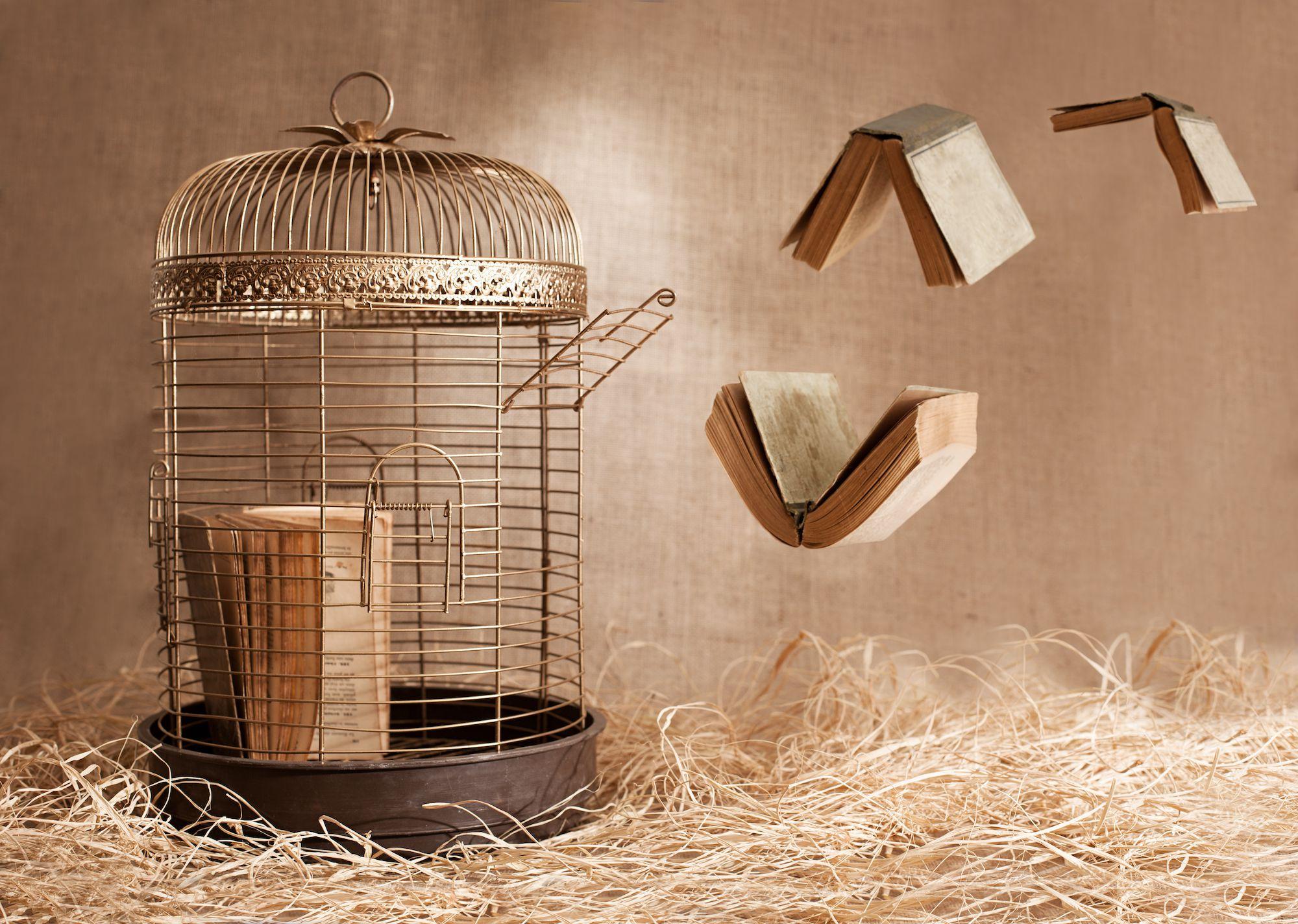 Vogelkooi met boeken