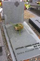 Antoon Van der Plaetse