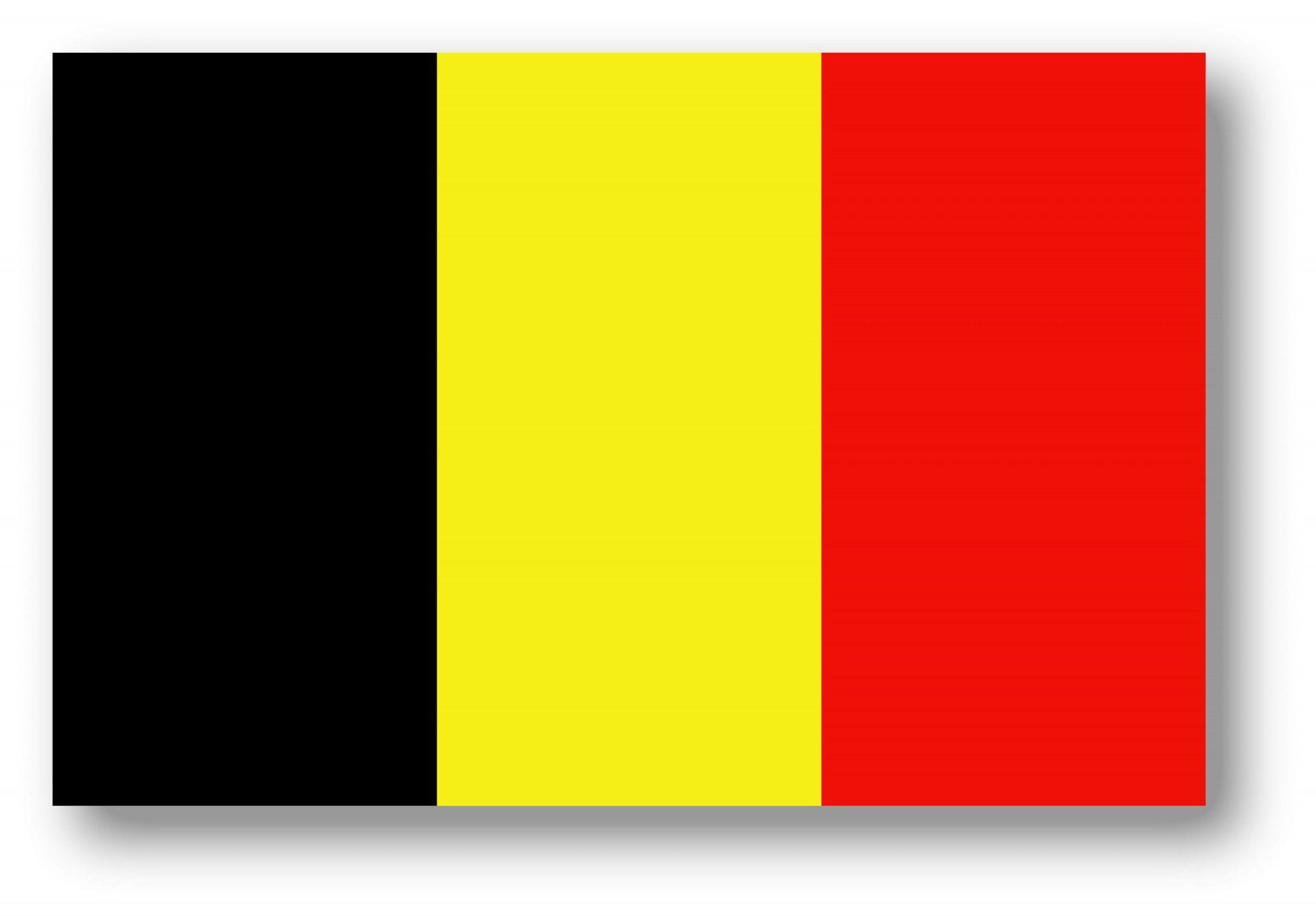 Belgische vlag.jpg