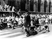 Sinksenfeesten 1977