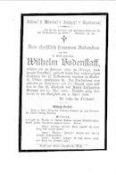 wilhelm(1895)20100121083749_00046.jpg