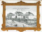 Westflandrica - Firmakaart, van kolenhandelaar Horta-Capon