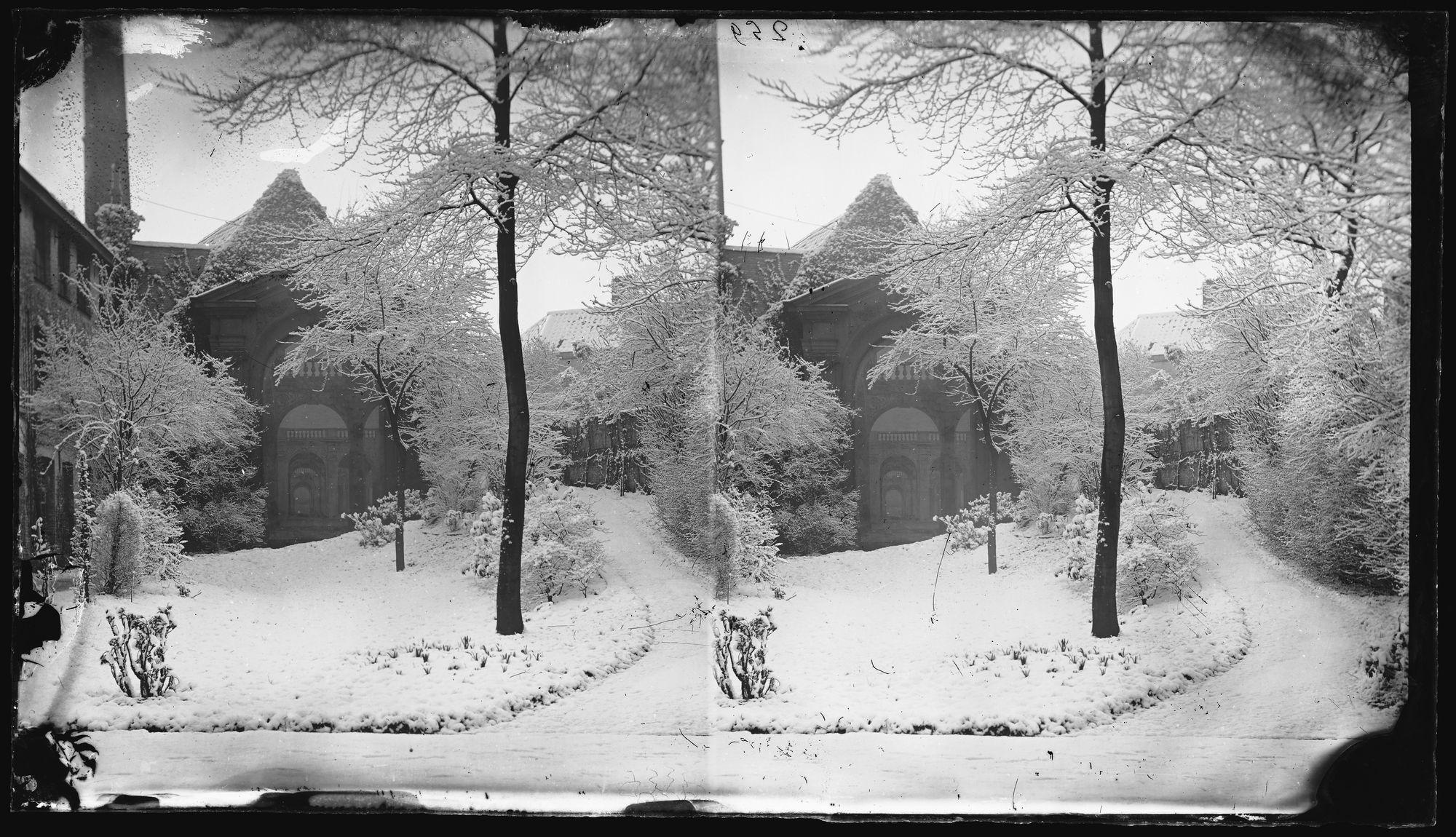 Zicht in de sneeuw