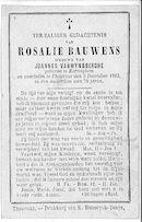 Rosalie Bauwens