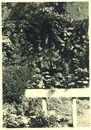 Grot van O.L.Vrouw van Lourdes op Overleie