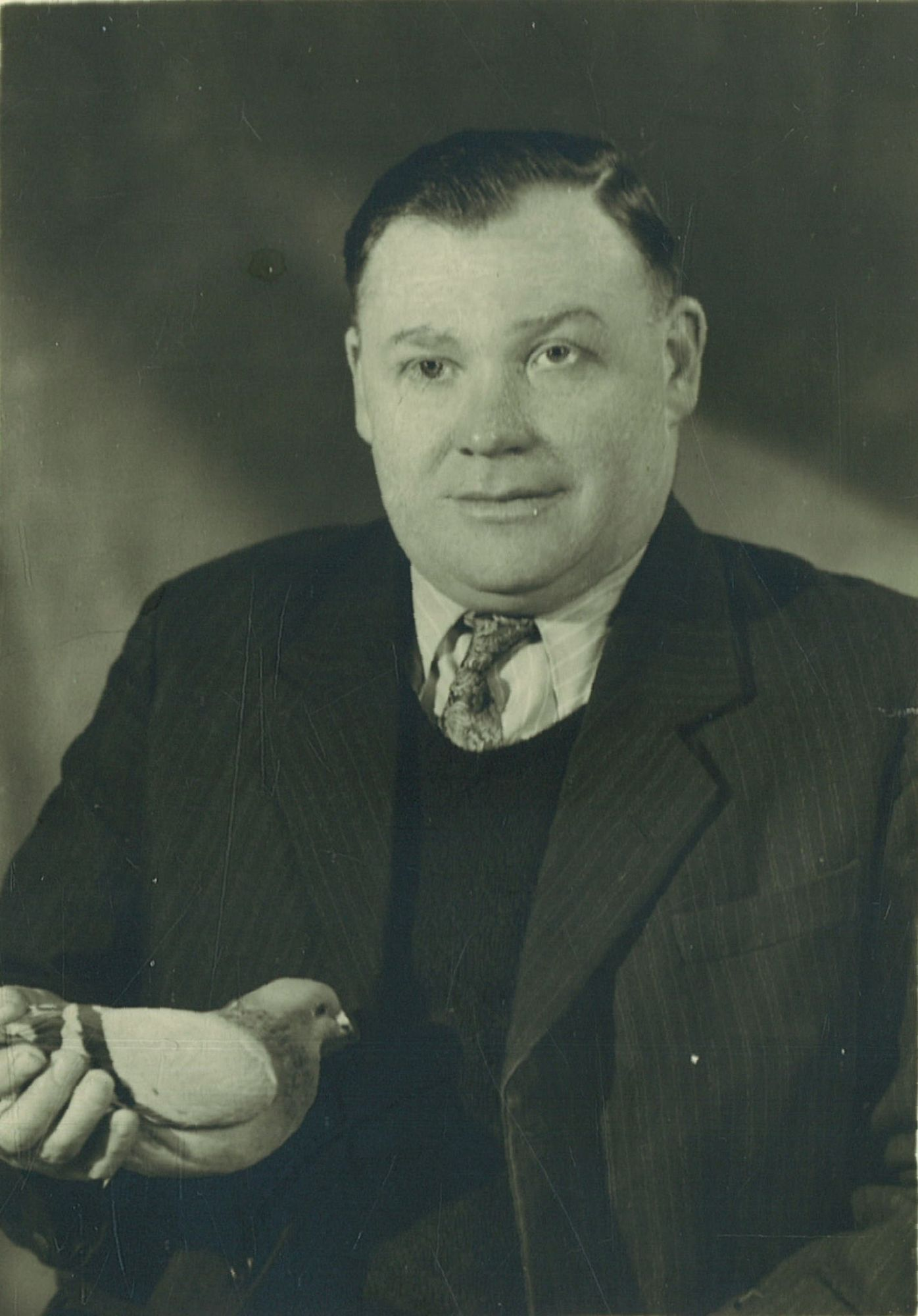 Raphael Goegebeur