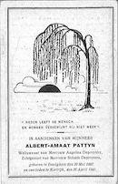 Albert-Amaat Pattyn