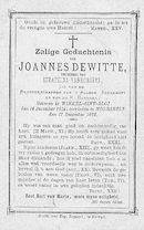 Joannes Dewitte