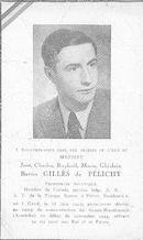 José-Charels-Raphaël-Marie-Ghislain Gillès de Pélichy